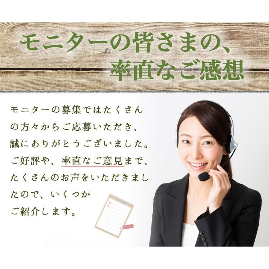 【12時まで当日出荷!】なでしこ すっきり茶DX 1パック 500円OFF  無添加ハーブティーで毎朝すっきり! ノンカフェイン 日本製 送料無料 herb-labo 09
