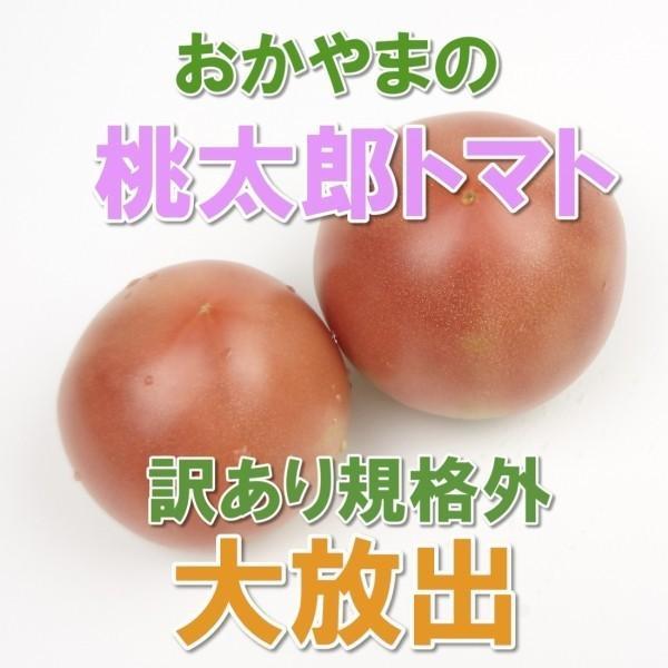 トマト 桃太郎 2kg 送料無料 訳あり規格外品 岡山びほく産 とまと|hey-com-bicchu
