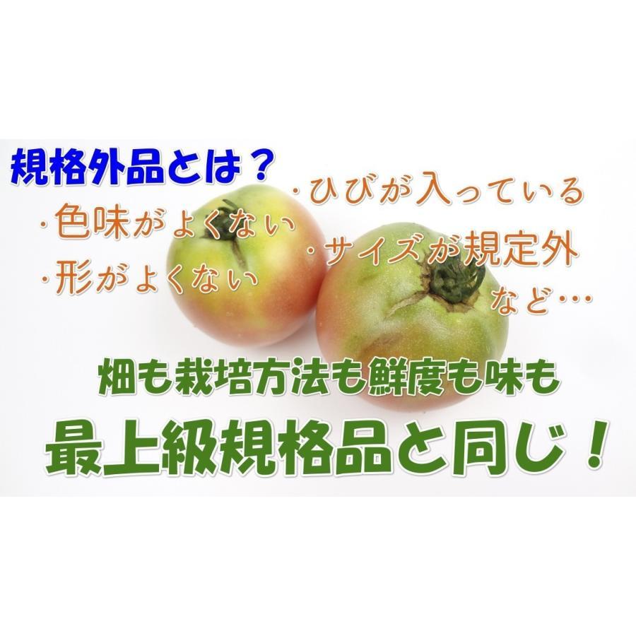 トマト 桃太郎 2kg 送料無料 訳あり規格外品 岡山びほく産 とまと|hey-com-bicchu|03