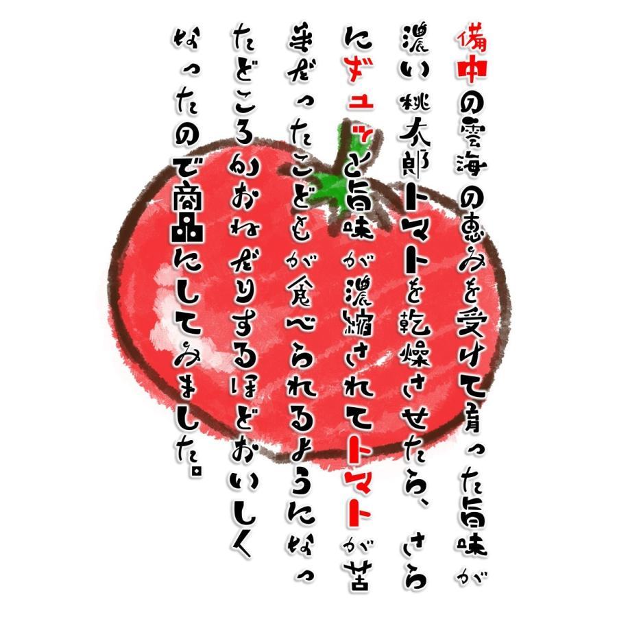 ドライトマト チャックつき 国産桃太郎トマトの旨味がギュッとつまった乾燥トマト10g 生トマト約3個分|hey-com-bicchu|05