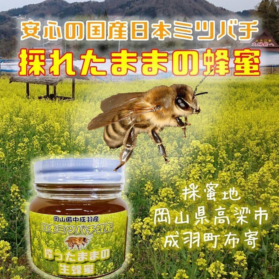 幻のはちみつ 雫搾り 2020年令和2年春産日本ミツバチ 百花蜜 希少安心の国産 蜜蜂 搾ったままの生蜂蜜ミニ 80ml|hey-com-bicchu