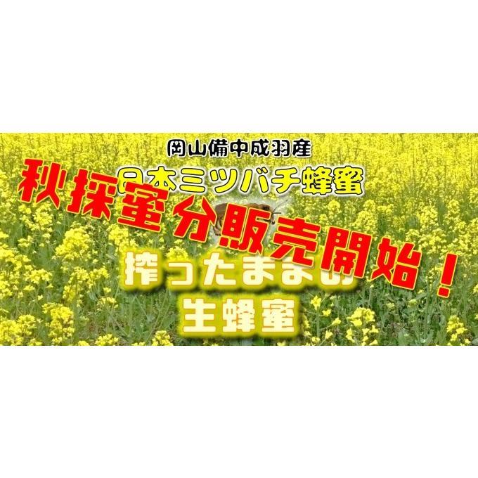 幻のはちみつ 雫搾り 2020年令和2年春産日本ミツバチ 百花蜜 希少安心の国産 蜜蜂 搾ったままの生蜂蜜ミニ 80ml|hey-com-bicchu|03