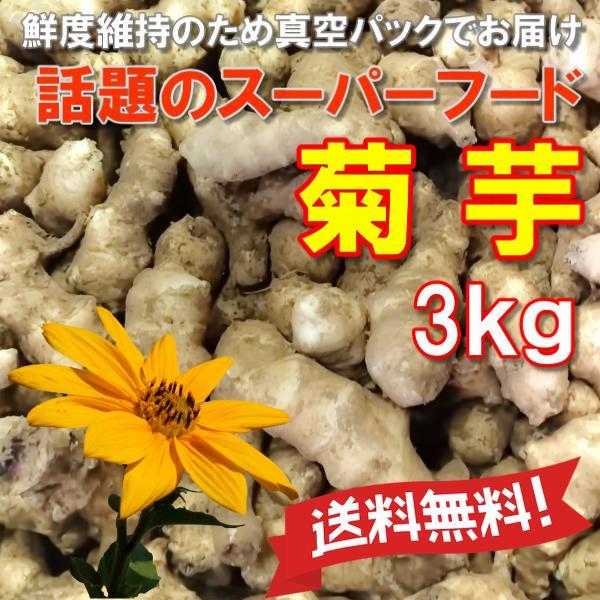 菊芋 土つき真空パックで長持ち きくいも 無農薬 送料無料 生 土つき脱気密封パック 3kg キクイモ 農薬化学肥料不使用 国産 岡山備中産 得トクセール|hey-com-bicchu