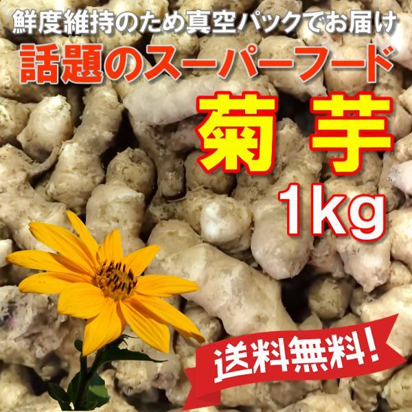 菊芋 きくいも 無農薬 送料無料 生 脱気密封パック 1kg キクイモ 国産岡山備中産 得トクセール|hey-com-bicchu