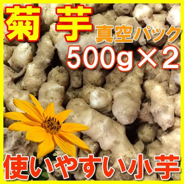 菊芋 土つき真空パックで長持ち きくいも 扱いやすいサイズの小芋 500g×2 国産おかやま備中産|hey-com-bicchu