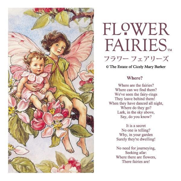 フラワーフェアリーズ 8アングル クロック <ピンク> 妖精 ボタニカル イギリス 時計 |hgpkaruizawa|03