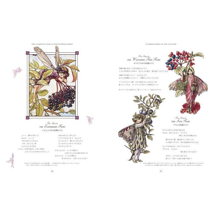 フラワーフェアリーズ 〜花の妖精たち 愛蔵版〜  妖精 ボタニカル イギリス  hgpkaruizawa 04
