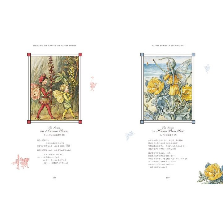 フラワーフェアリーズ 〜花の妖精たち 愛蔵版〜  妖精 ボタニカル イギリス  hgpkaruizawa 06