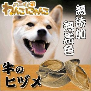 犬 おやつ 牛のヒヅメ プレーン 6個入 hi1525