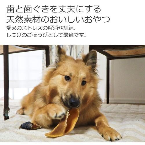 犬 おやつ 牛のヒヅメ プレーン 6個入 hi1525 02