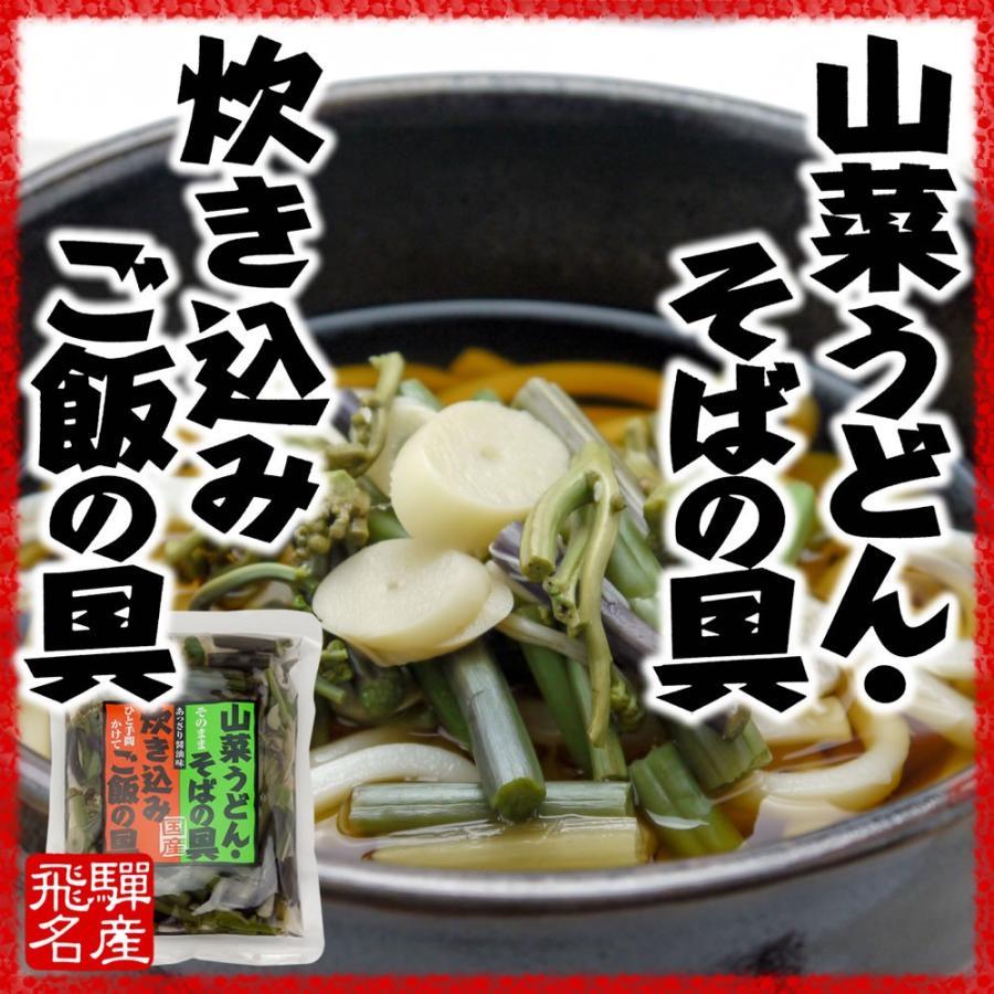 国産 山の珍味 100g 味付 山菜ミックス そば うどん 具 炊き込みご飯 hida-yama-sachi