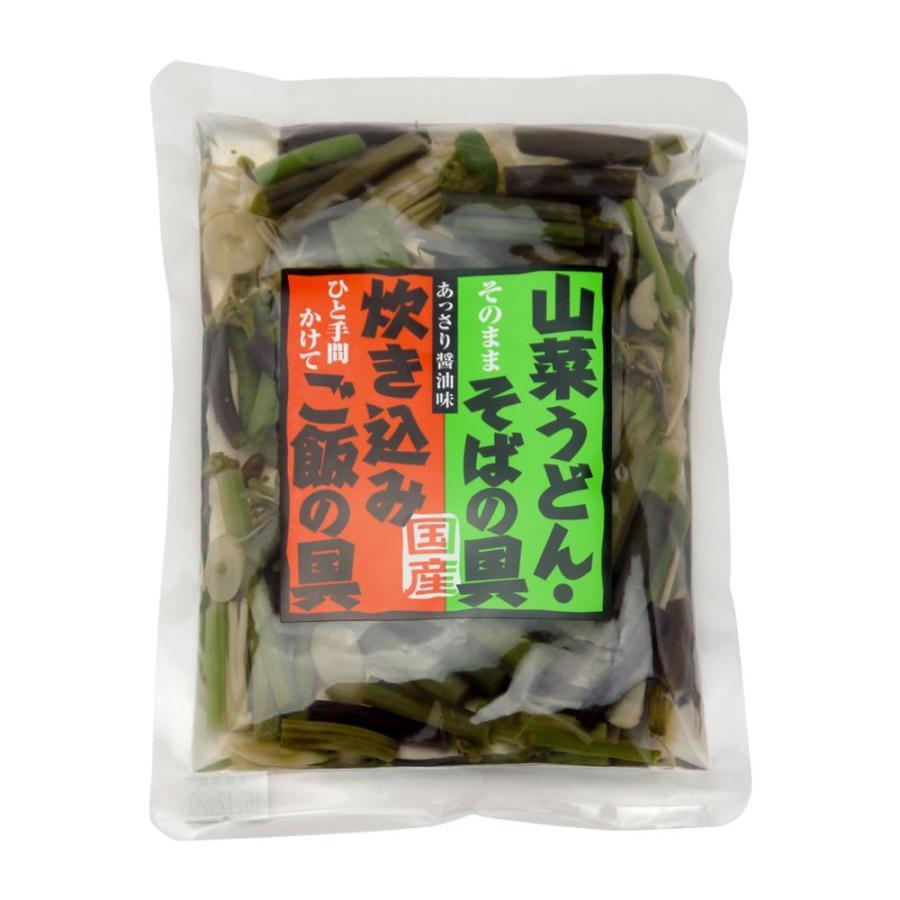 国産 山の珍味 100g 味付 山菜ミックス そば うどん 具 炊き込みご飯 hida-yama-sachi 02