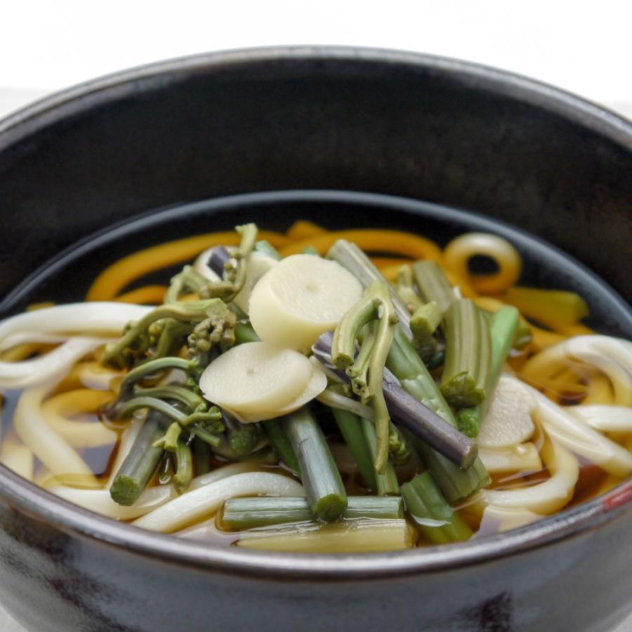 国産 山の珍味 100g 味付 山菜ミックス そば うどん 具 炊き込みご飯 hida-yama-sachi 04