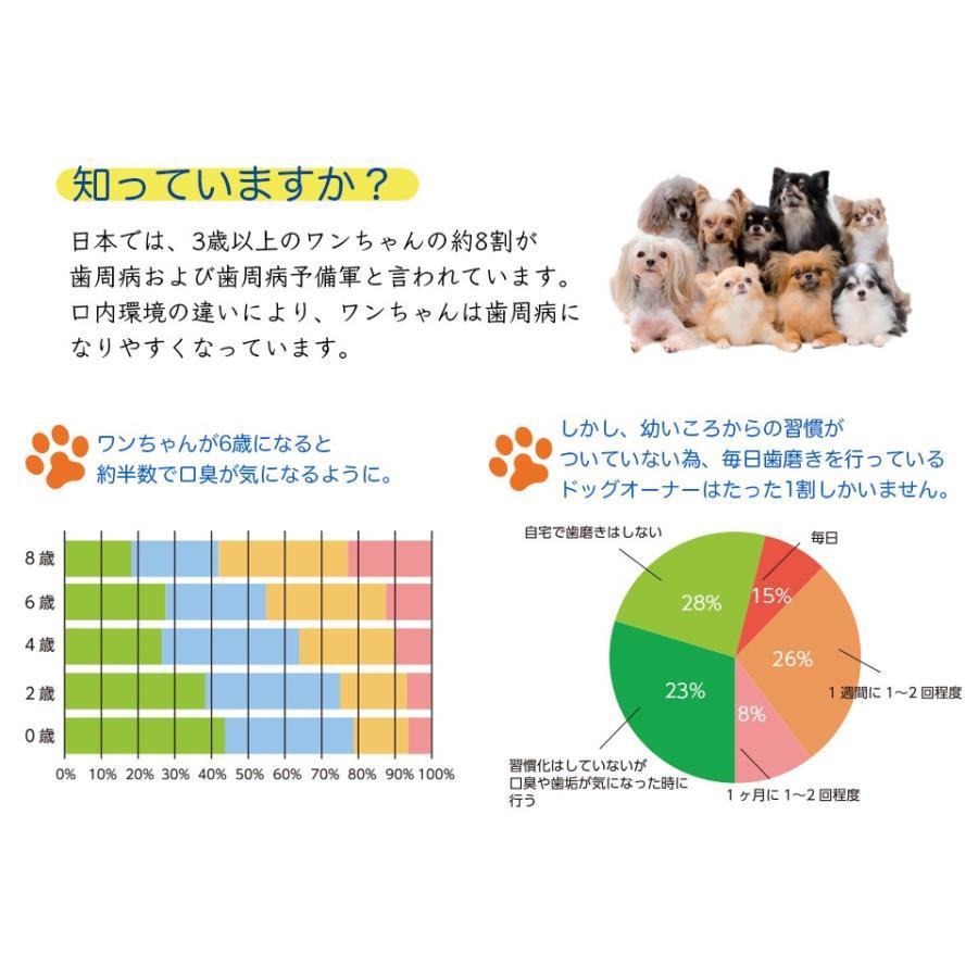 ペット用 消臭剤 フレピア 無添加 1ケース(300ml×24本) 口臭予防 人にも効果あり hikari-club 04