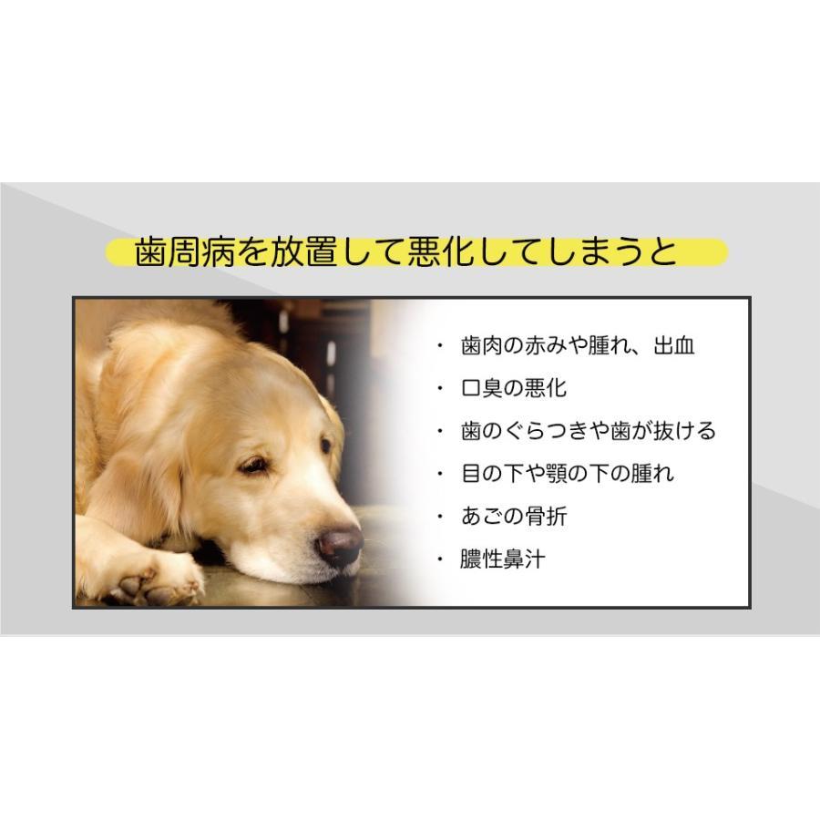 ペット用 消臭剤 フレピア 無添加 1ケース(300ml×24本) 口臭予防 人にも効果あり hikari-club 05