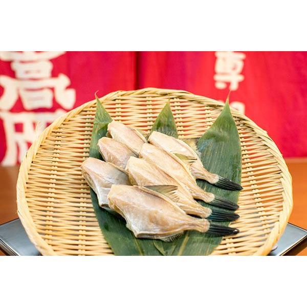 うまづらはぎの干物 塩干し 黒部名水仕上げ 真空パック 2匹入|himono-takaokaya|02