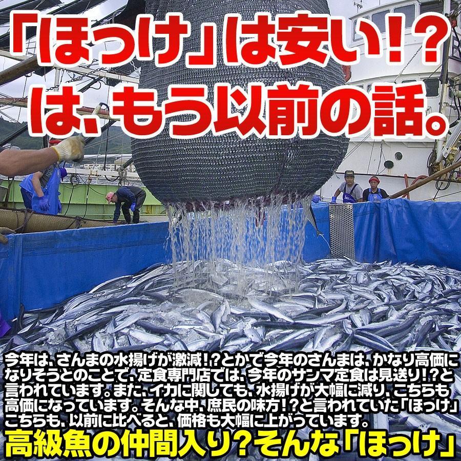 送料無料 干物 ホッケ ほっけ 干物 約1kg 5枚以上 訳あり わけあり ワケアリ 特大 肉厚 ギフト|himono-ya|02