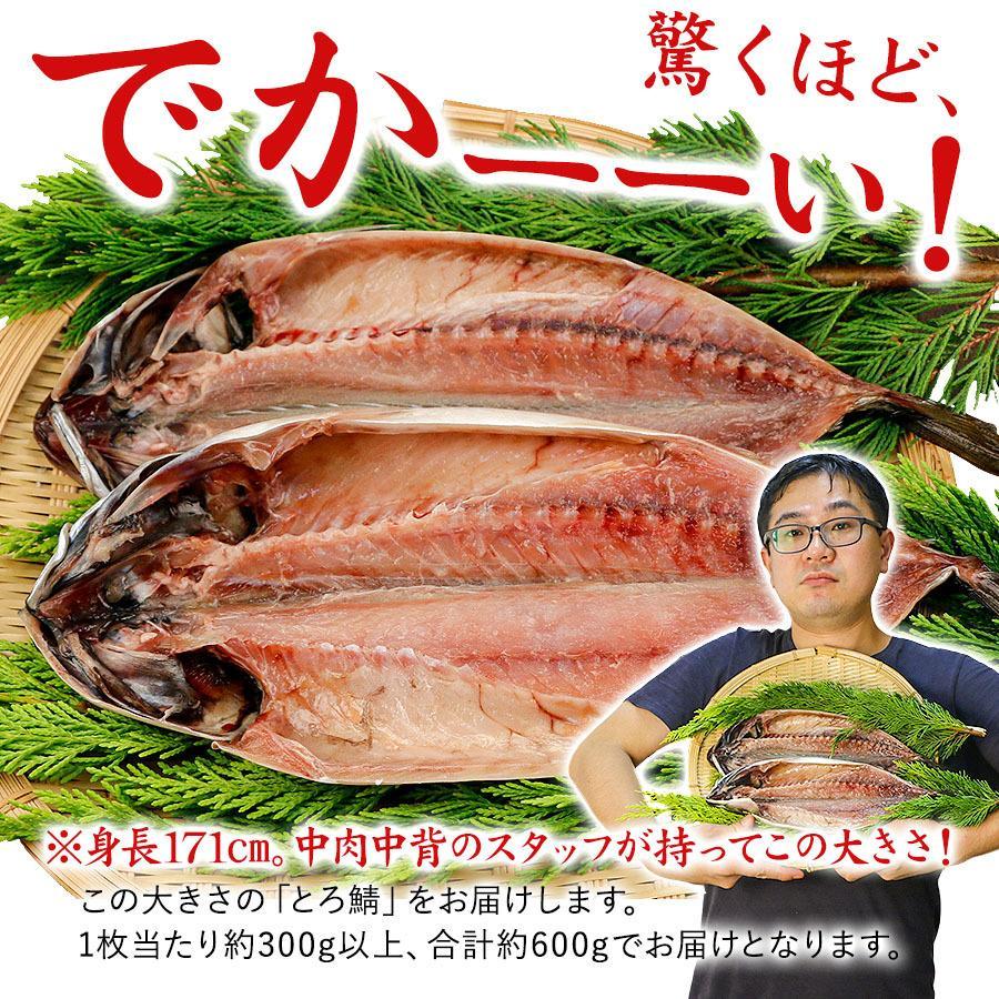 干物 とろさば 2枚セット 沼津 サバ 鯖 詰め合わせ グルメ ギフト プレゼント 送料無料|himono-ya|03