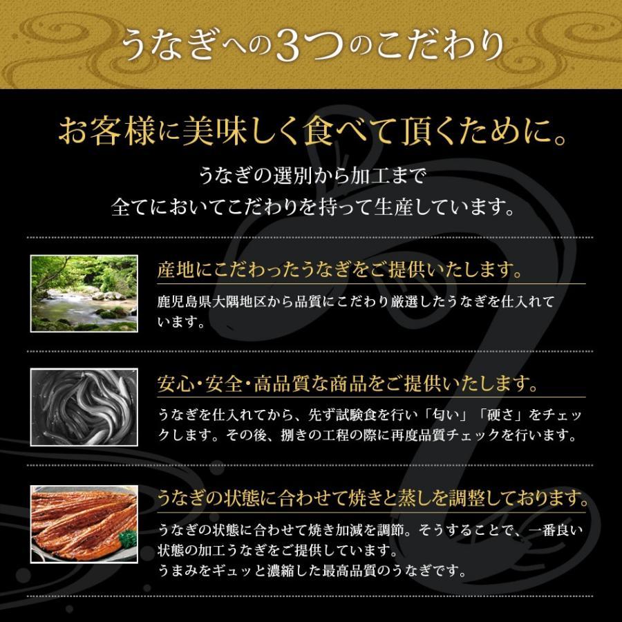プレゼント 2020 うなぎ 茶漬け 6食セット 国産 ウナギ 鰻 ひつまぶし 送料無料 博多久松 メッセージ カード hisamatsu 08
