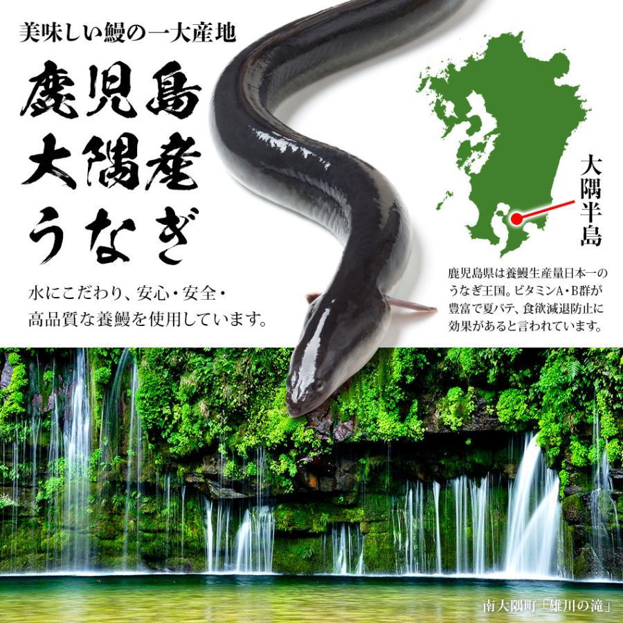 【鹿児島県産】 うなぎ蒲焼 3尾入 母の日ギフト2021|hisamatsu|07