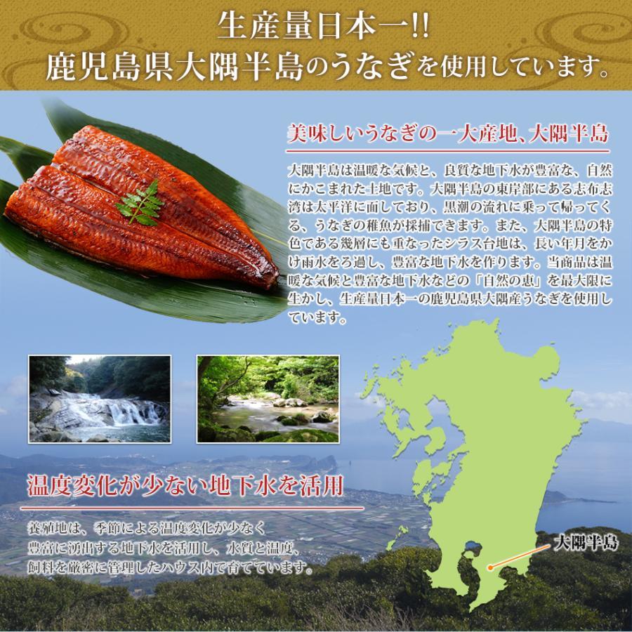 うなぎ蒲焼 4食セット うなぎ 鰻 ギフト プレゼント 2020 贈り物 グルメ 蒲焼き 国産|hisamatsu|06