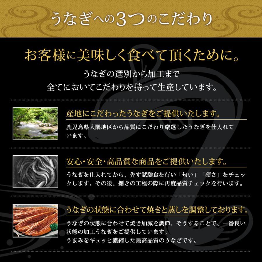うなぎ蒲焼 4食セット うなぎ 鰻 ギフト プレゼント 2020 贈り物 グルメ 蒲焼き 国産|hisamatsu|07