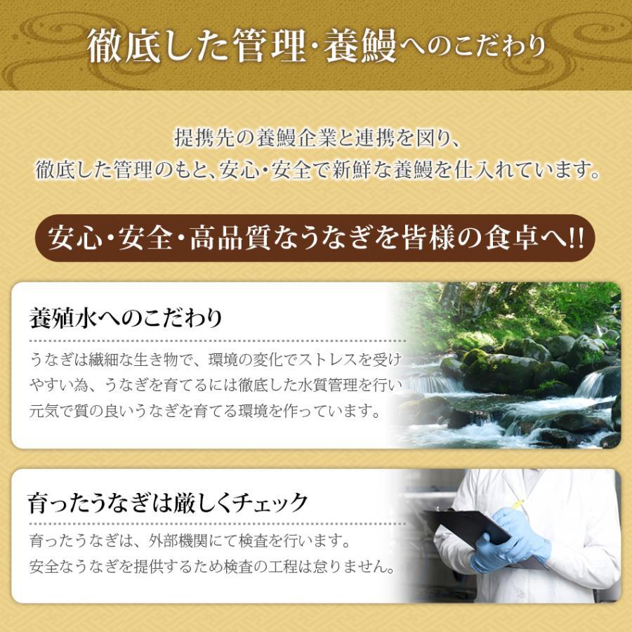 うなぎ蒲焼 4食セット うなぎ 鰻 ギフト プレゼント 2020 贈り物 グルメ 蒲焼き 国産|hisamatsu|08