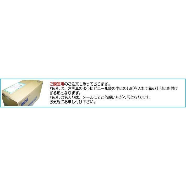 日田天領水 長期保存用 12L バッグインボックス 2個1組 12l × 2|hitatenryosui|13