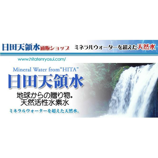 日田天領水 長期保存用 12L バッグインボックス 2個1組 12l × 2|hitatenryosui|06