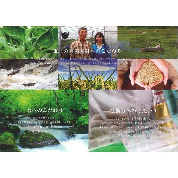 【メール便発送可】真秘水トゥルーローション・TINARO・化粧水・プロテオグリカン・オールインワン・石油系界面活性剤不使用|hizuya|04
