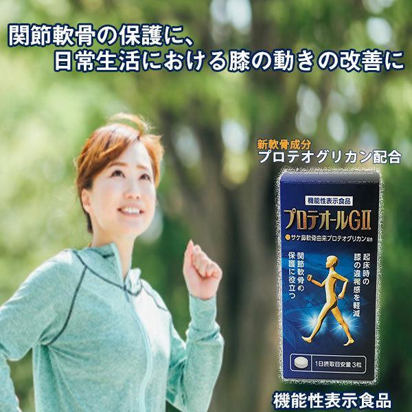 新商品【送料無料】プロテオールGII 90粒(約30日分) 機能性表示食品・プロテオグリカン・サプリ・膝・関節|hizuya|02