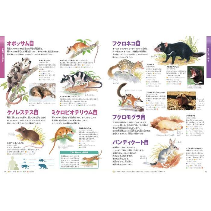 小学館の図鑑NEO 動物 DVDつき hkt-tsutayabooks 02