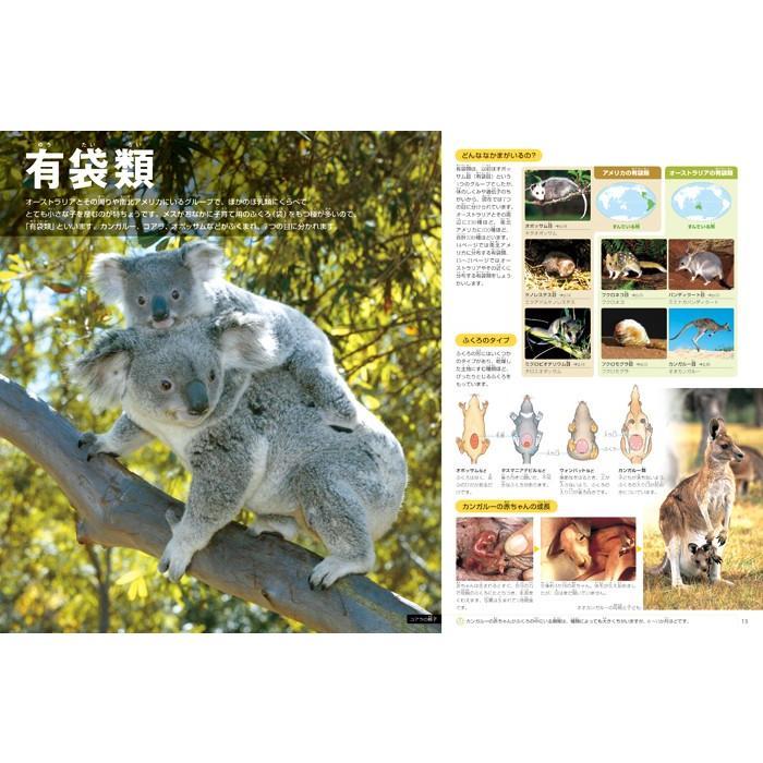 小学館の図鑑NEO 動物 DVDつき hkt-tsutayabooks 03