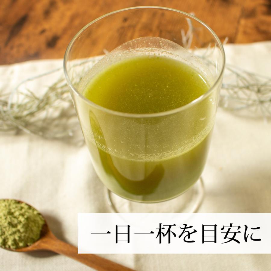 ゴーヤ粉末 380g ゴーヤ パウダー ゴーヤ茶 青汁 サプリメント|hl-labo|09