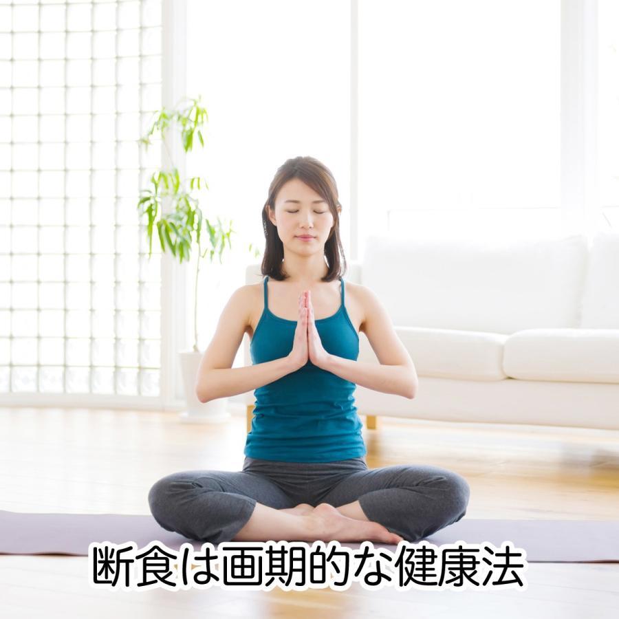 葛食・三日断食 ファスティングセット 3日間 ライフ ダイエット hl-labo 02