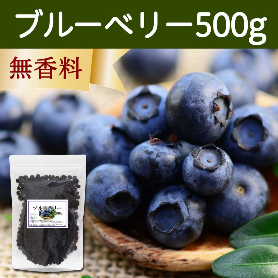 ブルーベリー500g ドライフルーツ チャック付き袋|hl-labo