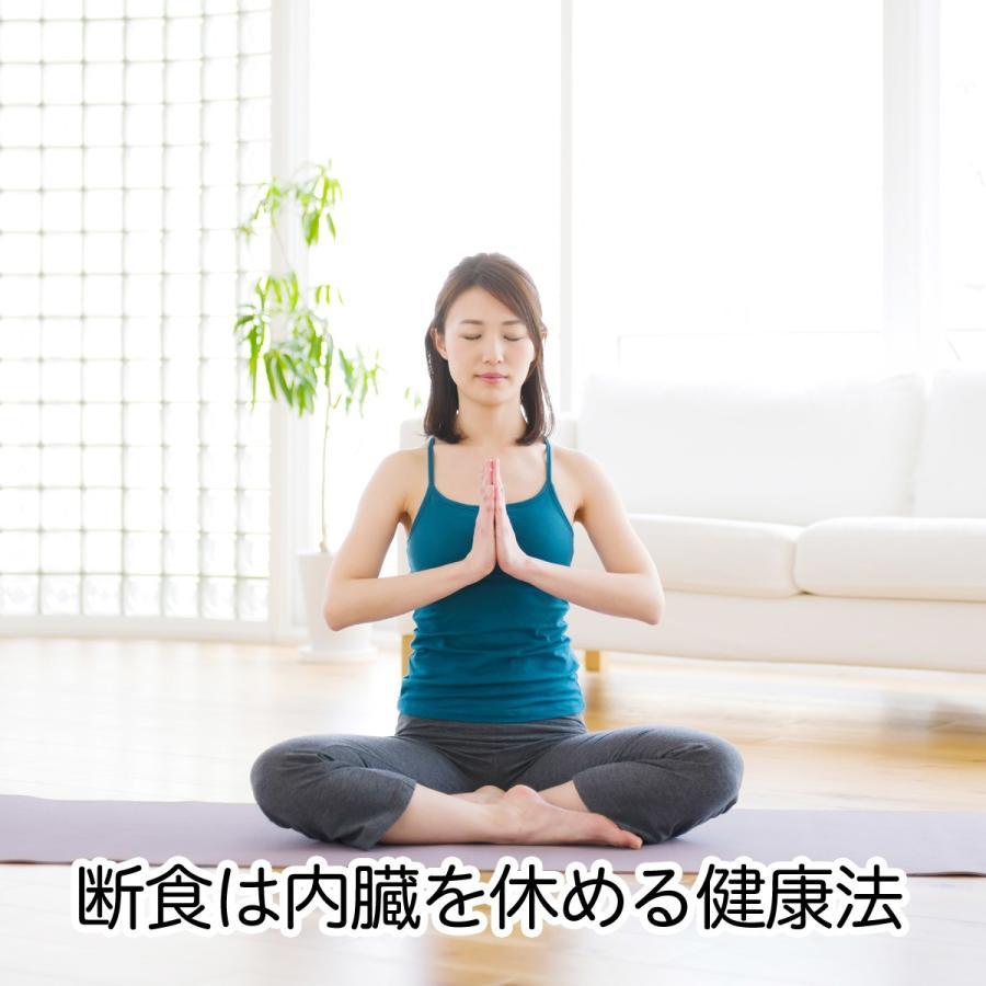 少食・七日断食 ファスティングセット 一週間 ダイエット 7日間|hl-labo|02