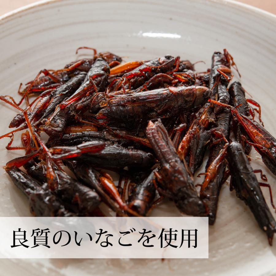 イナゴの佃煮 150g いなご 甘露煮 珍味 昆虫食 小えび 食感 hl-labo 05
