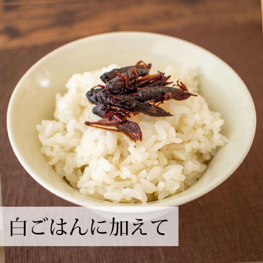 イナゴの佃煮 150g いなご 甘露煮 珍味 昆虫食 小えび 食感 hl-labo 06