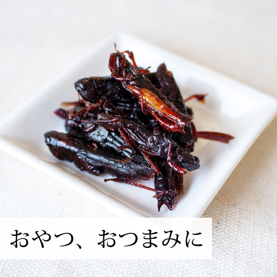 イナゴの佃煮 150g いなご 甘露煮 珍味 昆虫食 小えび 食感 hl-labo 10