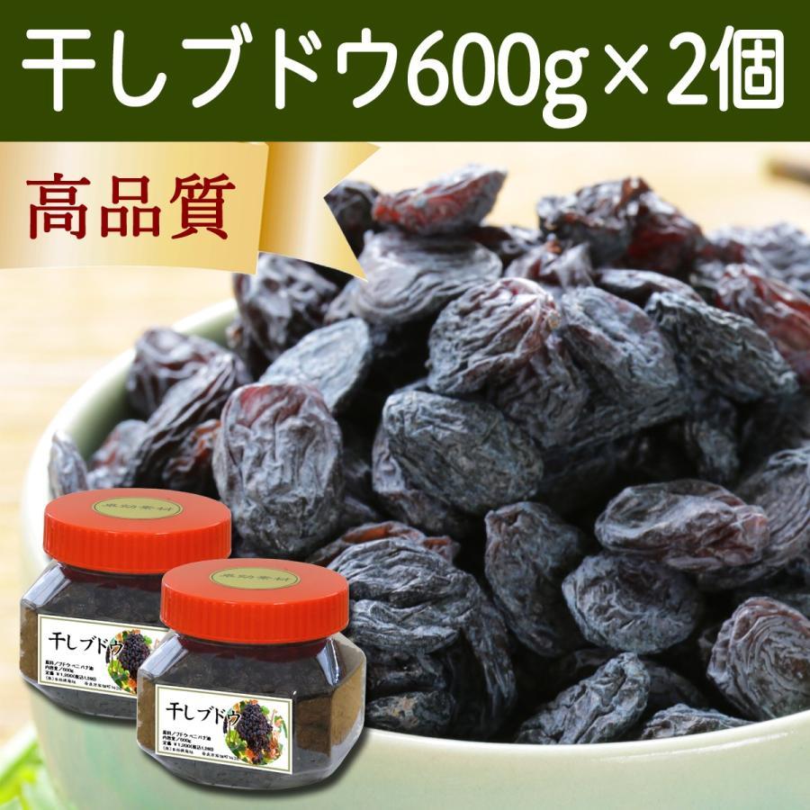 干しブドウ600g×2個 砂糖不使用 レーズン ドライフルーツ hl-labo