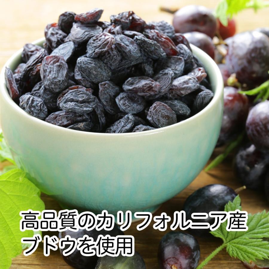 干しブドウ600g×2個 砂糖不使用 レーズン ドライフルーツ hl-labo 02