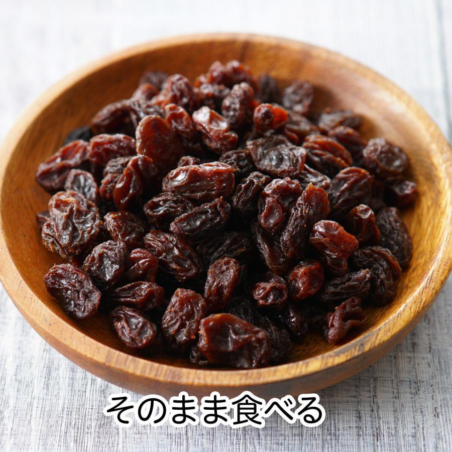 干しブドウ600g×2個 砂糖不使用 レーズン ドライフルーツ hl-labo 04