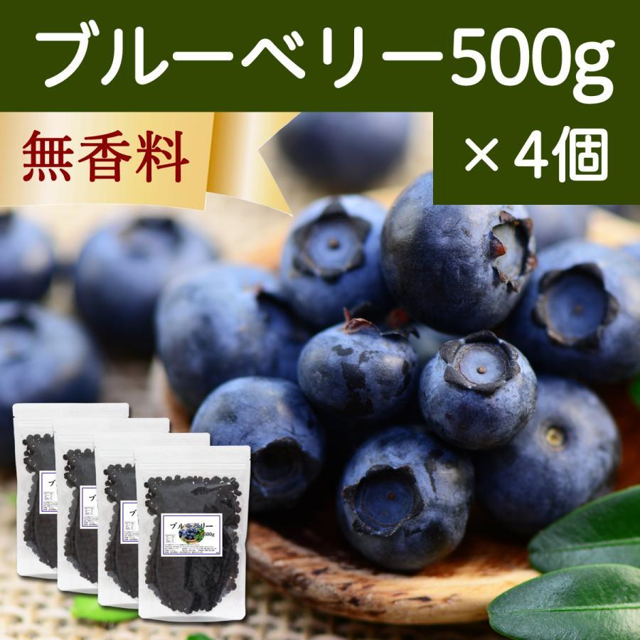 ブルーベリー500g×4個 ドライフルーツ チャック付き袋|hl-labo