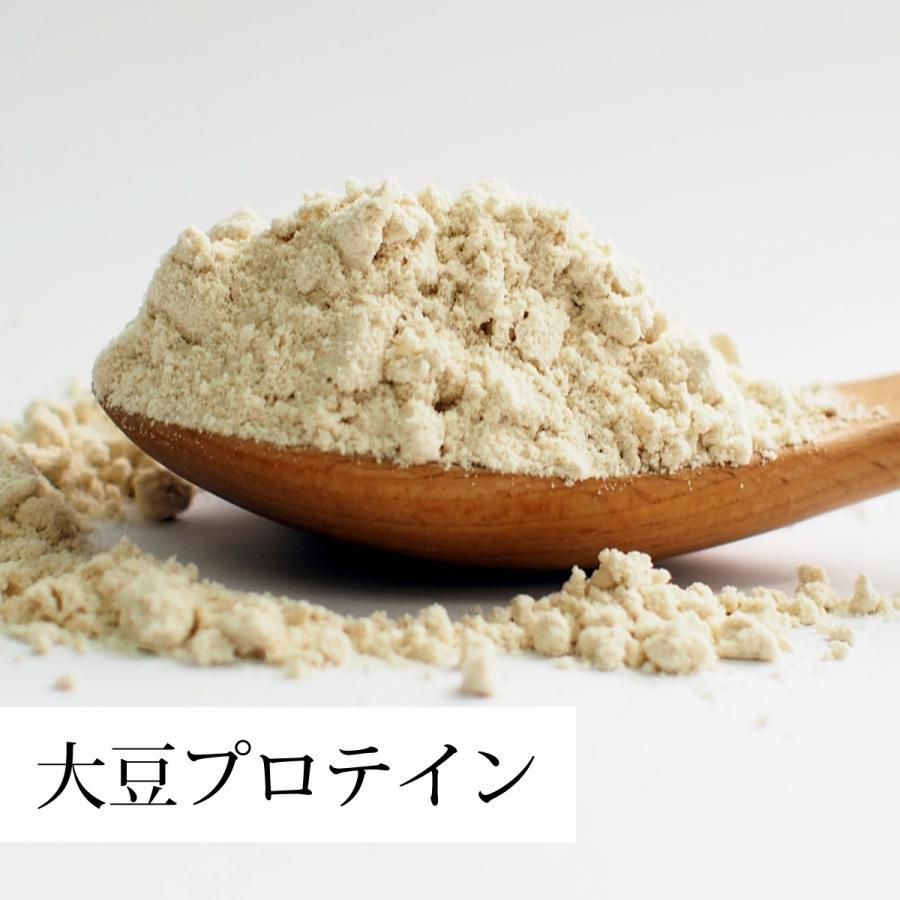大豆プロテイン 1kg ソイ 大豆 プロテイン 無添加 女性 高齢者 送料無料 hl-labo 05