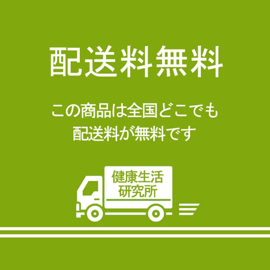 ゴーヤ粉末 380g ゴーヤ パウダー ゴーヤ茶 青汁 サプリメント 送料無料|hl-labo|14