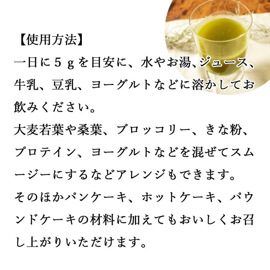 ゴーヤ粉末 380g ゴーヤ パウダー ゴーヤ茶 青汁 サプリメント 送料無料|hl-labo|04
