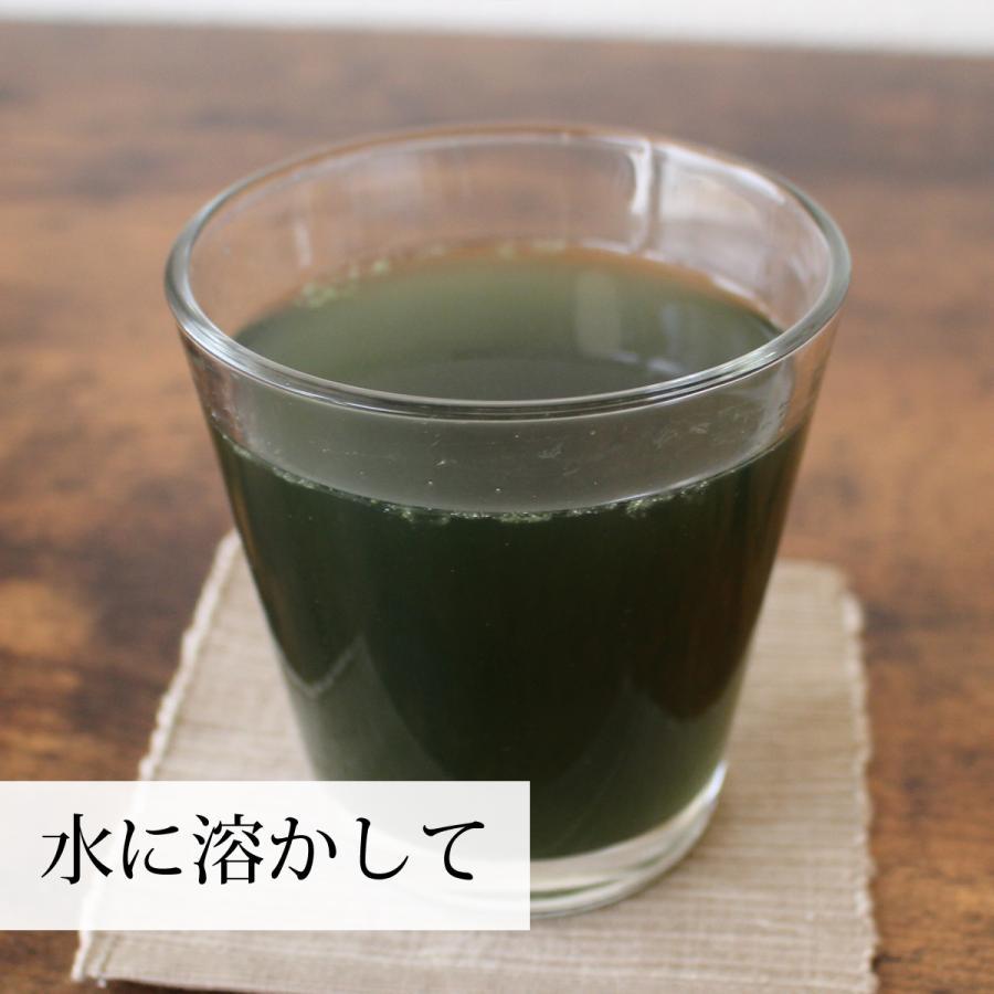 よもぎ粉末 100g よもぎパウダー よもぎ茶 ヨモギ粉 国産 送料無料|hl-labo|07