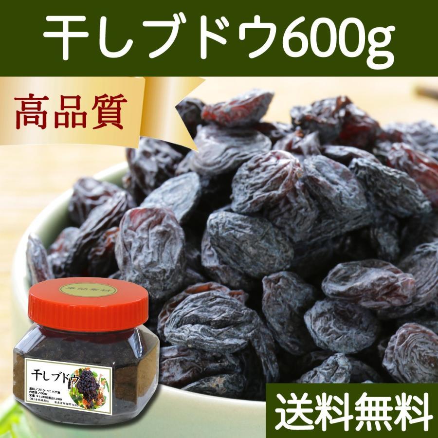 干しブドウ600g 砂糖不使用 レーズン ドライフルーツ 送料無料 hl-labo