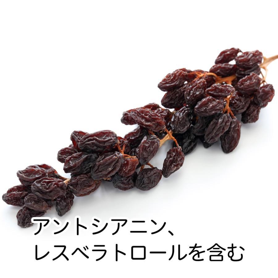 干しブドウ600g 砂糖不使用 レーズン ドライフルーツ 送料無料 hl-labo 03